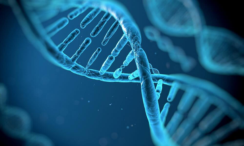 Kontroverse: Dürfen wir am eigenen Genom experimentieren?