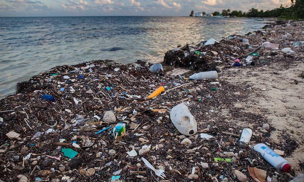 CH: Bundesrat will kein Plastikverbot in der Schweiz