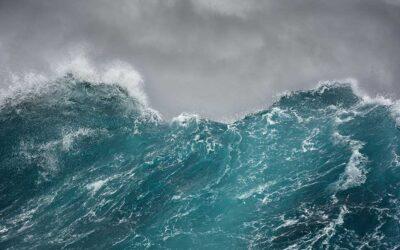 Kritik an Beschlagnahmung des Seenotretters Sea Watch