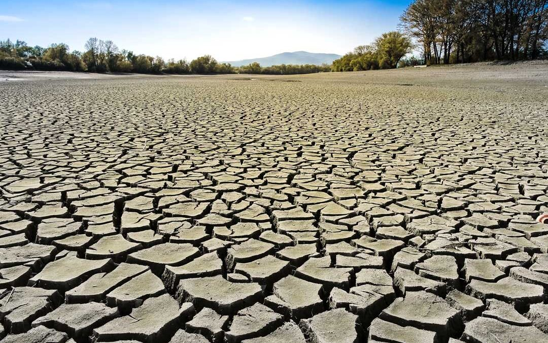 Mehr Einsatz gegen Klimawandel angesichts steigender Hungerzahlen, mahnt Brot für die Welt