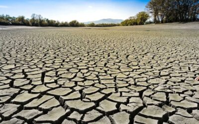 Caritas Schweiz lanciert Klima-Aktie