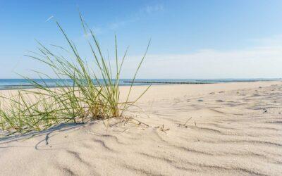 Corona: Tourismuskrise für nachhaltigen Neustart nutzen
